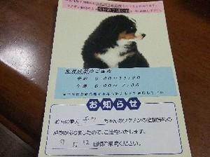 コピー ~ DSCF3650.JPG
