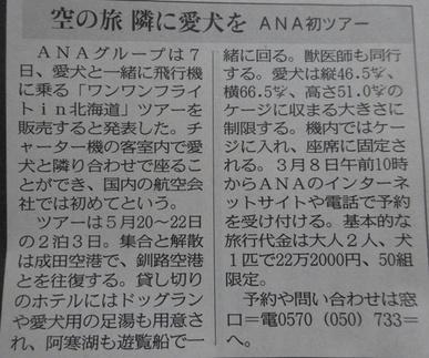 DSC08027 - コピー.JPG
